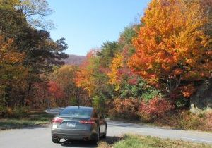 fall-on-the-richard-b-russell-scenic-highway